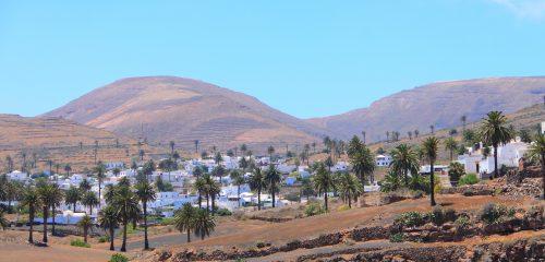 Haria, das Tal der tausend Palmen, Lanzarote
